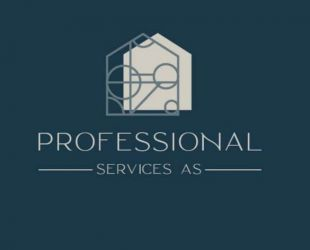 PROFESSIONAL SERVICES AS